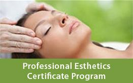 Professional Esthetics Certificate Program